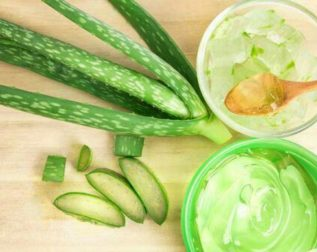 Aloe vera for good skin and hair